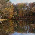 """Bushkill Falls, PA"" by fsjay"