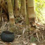 """""""Cooking Pot and Bamboo"""" by hisreflected"""