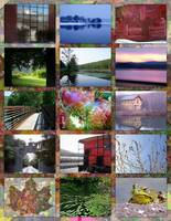 Berkshire County Collage