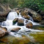 Divine Cascade - Blue Ridge Waterfalls