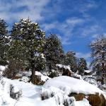 """Crisp Winter Air"" by johnmclaird"