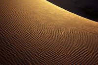 Sahara Abstract