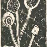 """""""Fungi Wait"""" by LeeAdams"""