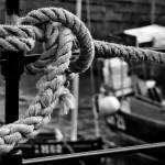 """""""Tied up"""" by dave_finlayson"""