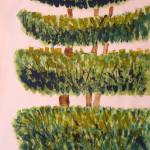 """topiary Tree"" by AnitaBell"