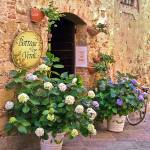 """Flowers-shades of yellow green,violet,Siena,Italy"" by mjphoto-graphics"