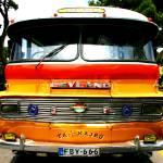 """Maltese Bus"" by amandavlastas"