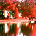 """Lakefront Infrared"" by DoreanGrey"