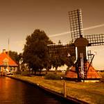 """Precious Holland"" by cresk"