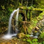 """""""Wasserrad"""" by schmaeche"""