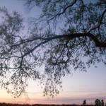 """coucher de soleil"" by clynnchilders"