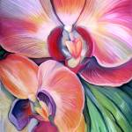 """Tropical_Orchid"" by carolhoughton"