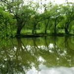 """Spring Halls Pond_"" by PTNagano"