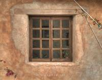 Adobe Window