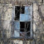 """""""Window"""" by dkocherhans"""