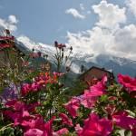 """""""Chamonix Town"""" by TonyDoddPhotography"""