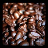 Coffee Beans Through The Viewfinder