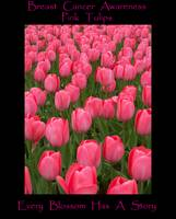 Pink Tulips Breast Cancer Awareness