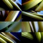 """celery in a blue bowl 4"" by LOUISEDIONNE"