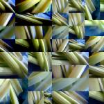 """celery in a blue bowl multiplied"" by LOUISEDIONNE"