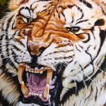 """Roar"" by davelarson"