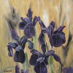 """Black Irises"" by BarbaraHarper"