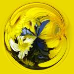 """""""Yellow Floral"""" by DSainton"""