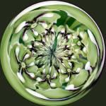 """""""Flower Wheel"""" by DSainton"""