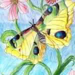 """""""Derek Tang 10- Butterfly Garden"""" by sabahkinderart"""