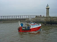 Fishing Boat WY110 Emulater  (15619-RDA)
