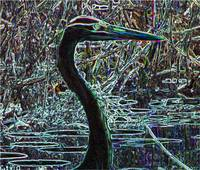 Great Blue Heron Altered