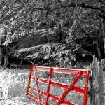 """Red Gate"" by Sari_McNamee"