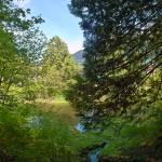 """Springtime, Harrison, BC 20"" by PriscillaTurner"