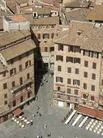 Siena, Piazza del Campo from the Torre del Mangia