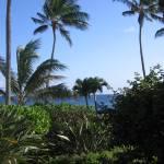 """Hawaii_2"" by jsrassociates"