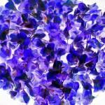 """Orchid Bowl Indigo"" by LeslieTillmann"