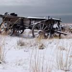 """""""Wagon"""" by dkocherhans"""