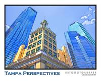 Tampa Perspectives