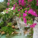 """Mexican Fountain - Waterfall with Flowers"" by Philippa"