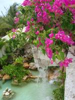 Mexican Fountain - Waterfall with Flowers
