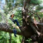 """Boy in Tree - New Mexico - on Hiking Trail"" by Philippa"