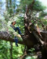 Boy in Tree - New Mexico - on Hiking Trail