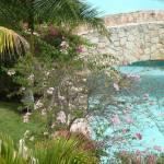 """Bridge - Tropical garden"" by Philippa"