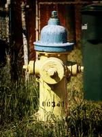 Just a fire hydrant