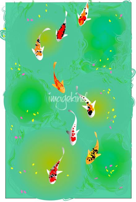Decorative koi artwork for sale on fine art prints - Decoratie kooi ...