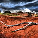 """Kauai Red Dirt"" by PJPHOTO"