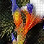 """""""iris"""" by studiobrian"""