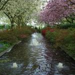 """Fountains at Keukenhof Gardens"" by vicki"