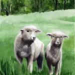 """sheep"" by pedigreeartist"