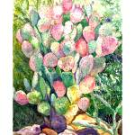 """Cactus Watercolor Painting"" by jacquerose"
